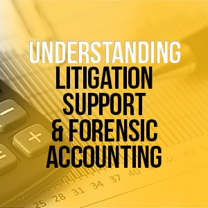Understanding Litigation Support And Forensic Accounting
